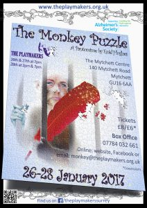 The Monkey Puzzle Poster